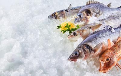 Mangiare il pesce direttamente in pescheria